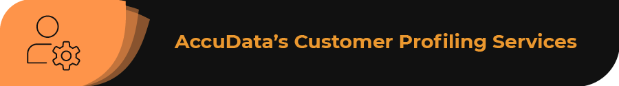 This section covers AccuData's customer profiling services.